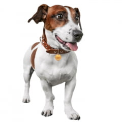 Rastreador GPS G-Pet para animais